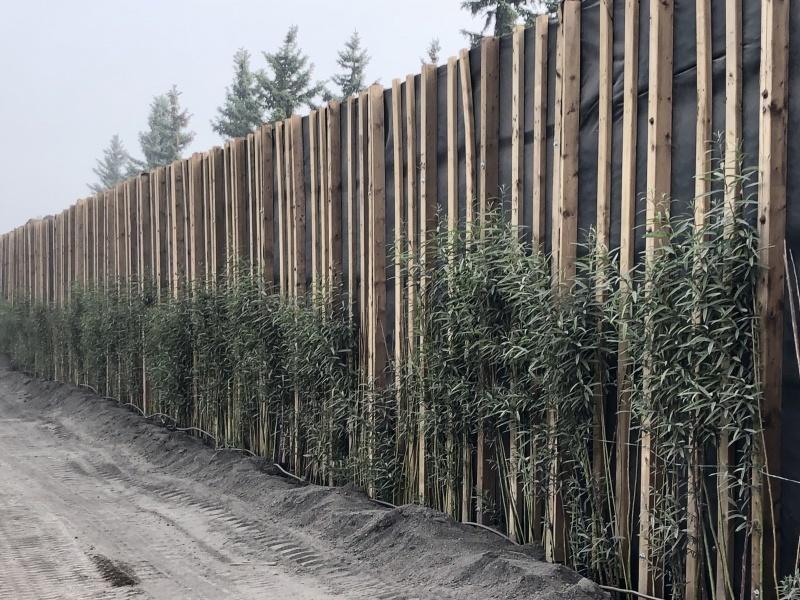 Vegetated sound barrier, Edmonton AB