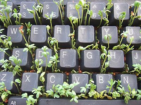 Charming Telus Spark, Leaf Ninjas. Garden Hack, Adults Only Night