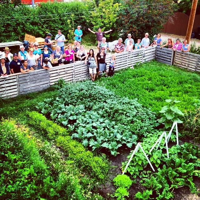 Calgary permaculture tour, leaf ninjas urban farm, calgary food