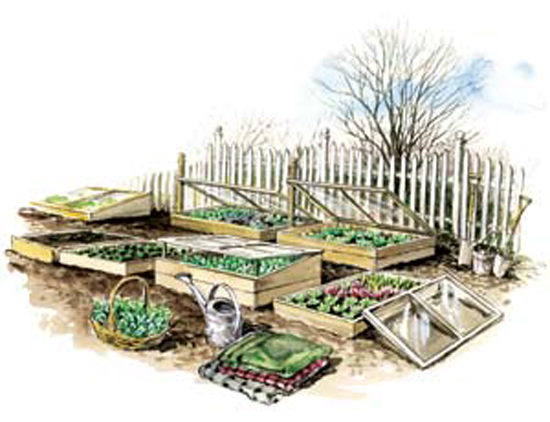 cold frame, calgary gardening season extension, calgary leaf ninjas gardening
